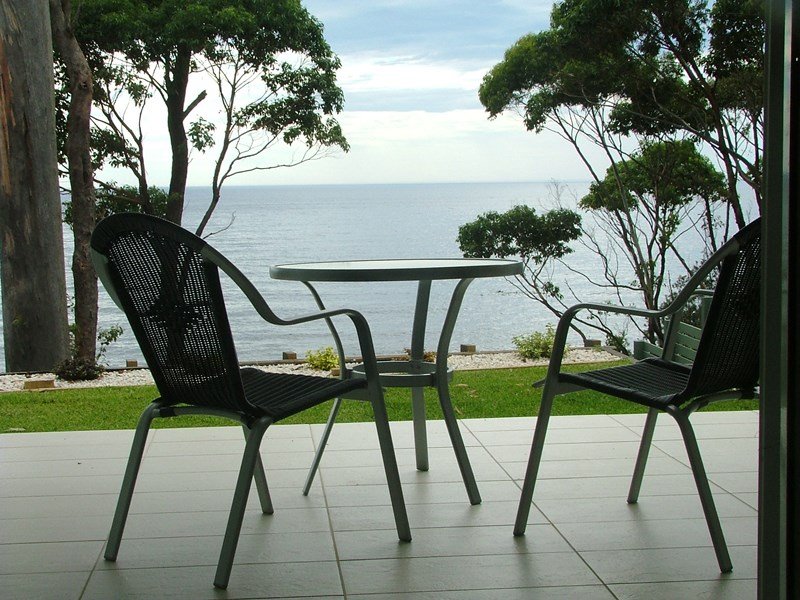 Mollymook Beach Accommodation,couples accommodation,mollymook,accommodation,apartment,whale watch